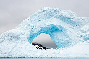 Iceberg-Window