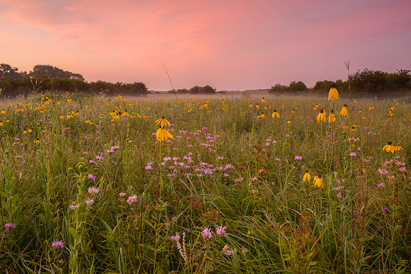 Image of the Year: Twilight on the Prairie