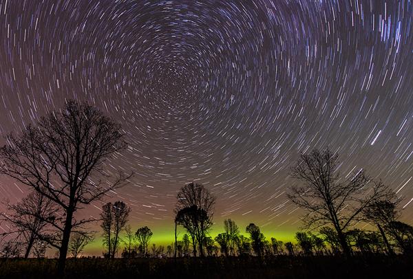 Oak Savanna Star Trails