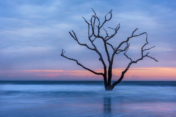 Image of the Year: Botany Bay